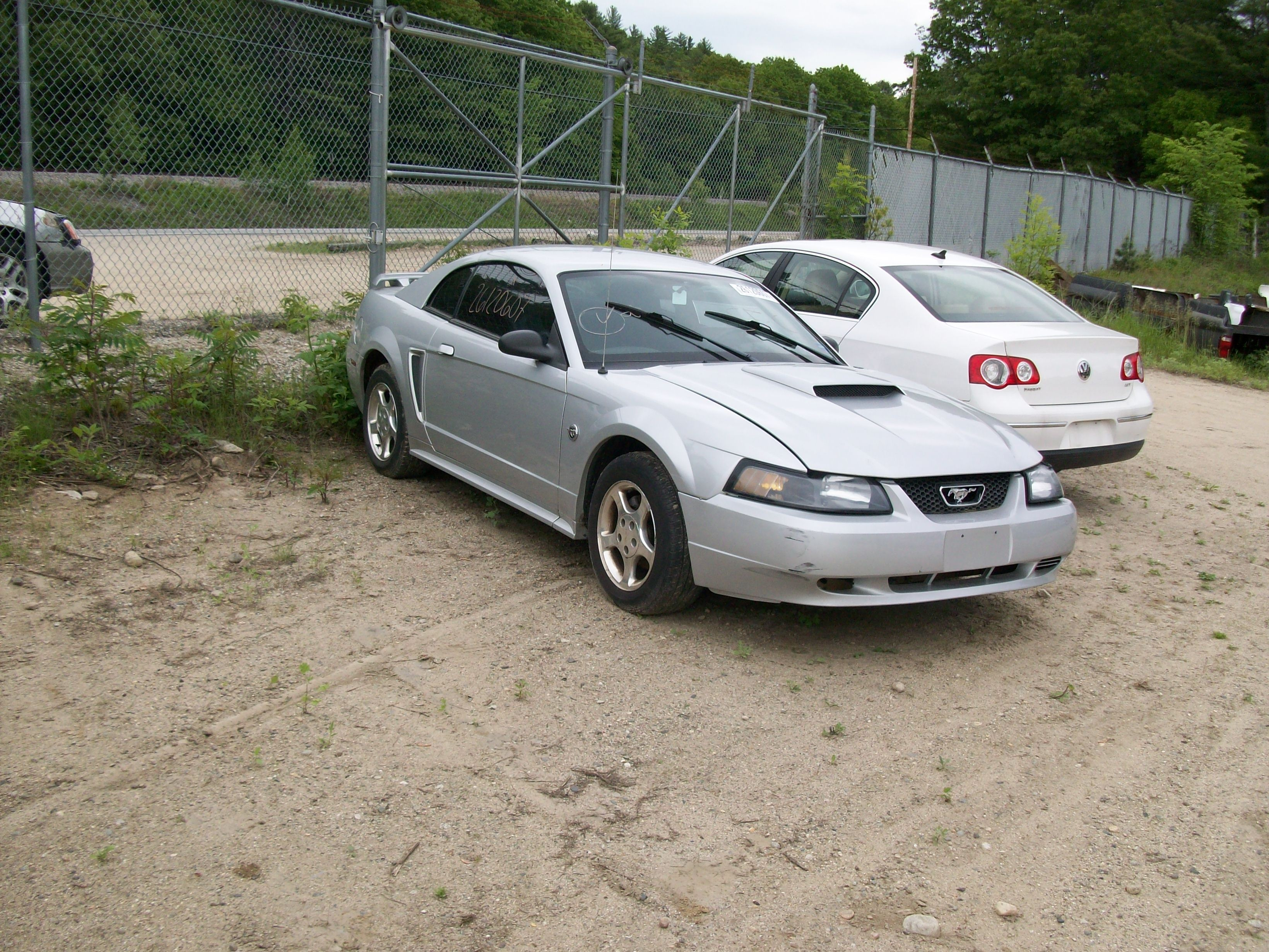 MUSTANGS ONLY AT LASHINS AUTO SALVAGE
